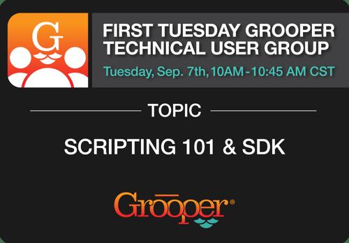 Grooper_Scripting101_SDK Webinaar FTGTUG_1 copy 3